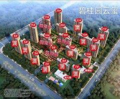 (钢山街道)碧桂园·云玺3室2厅2卫790000万130m²出卖